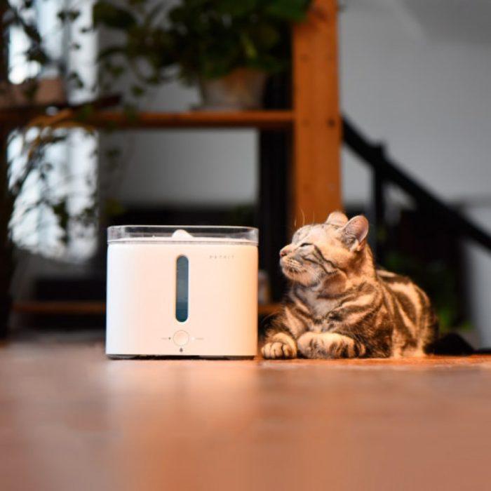 fuente-para-gatos-y-perros-petkit-eversweet-cb0089-04